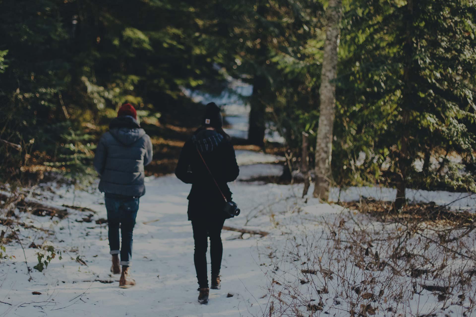 slider_bkg_winter_walk