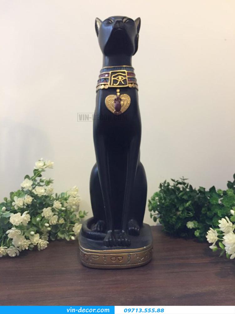 mèo đen độc đáo TD 003 04