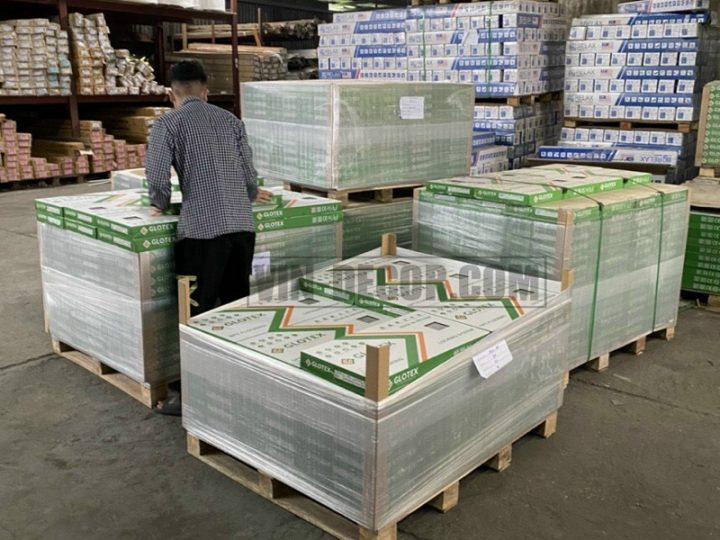 Phân phối sàn nhựa Glotex cho cửa hàng, đại lý, dự án, công trình